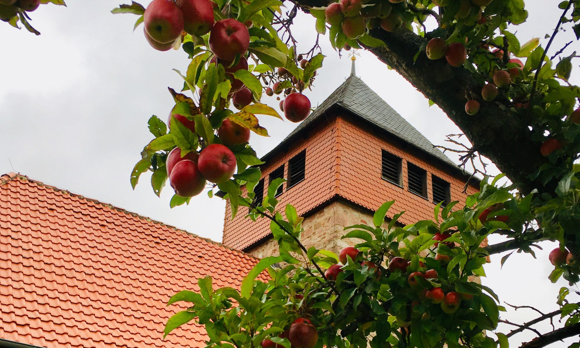 Heimatverein Schlarpe e.V.